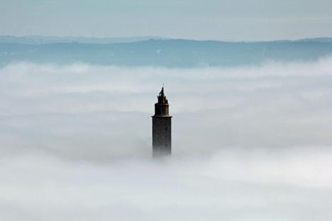 navegando sobre niebla_Rhodophyta_Flickr